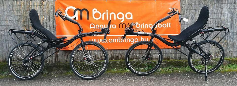 Két Azub Max fekvőkerékpár Pinion váltóval