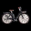 Pegasus Passion E7F elektromos kerékpár fekete színben