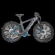 BULLS Twenty9 Evo 1 CX elektromos kerékpár