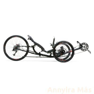 Ice Sprint 26 X trike